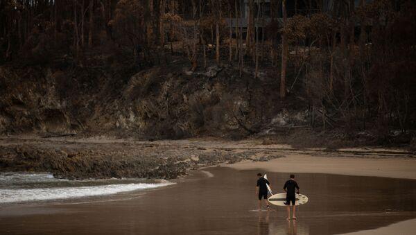 Consecuencias de los incendios forestales en Australia - Sputnik Mundo