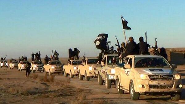 Los terroristas del Estado Islámico  - Sputnik Mundo
