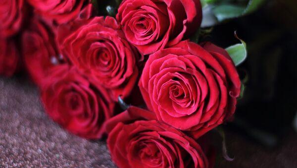 Rosas  - Sputnik Mundo