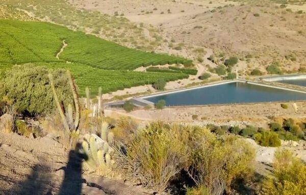 Plantaciones y embalses de agua en Petorca, Chile - Sputnik Mundo