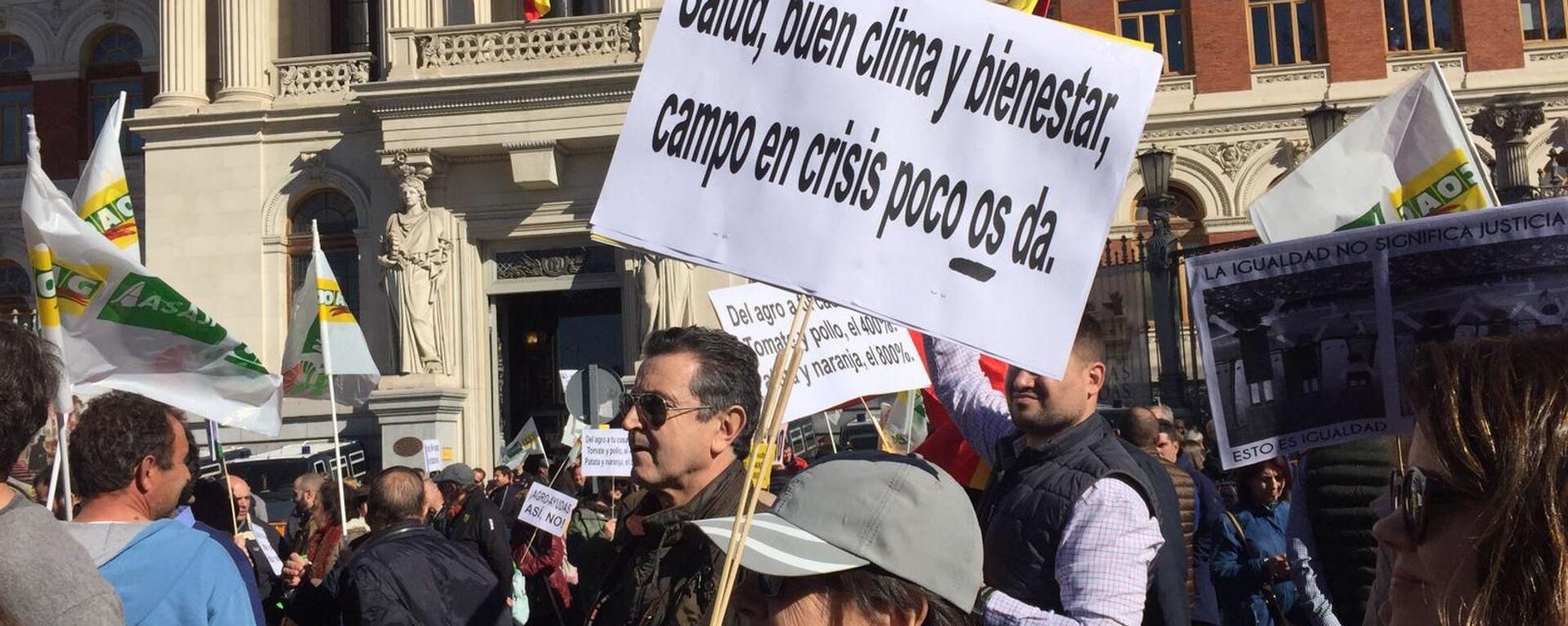 Los agricultores y ganaderos de España protagonizan una nueva jornada de protestas - Sputnik Mundo, 1920, 27.02.2020