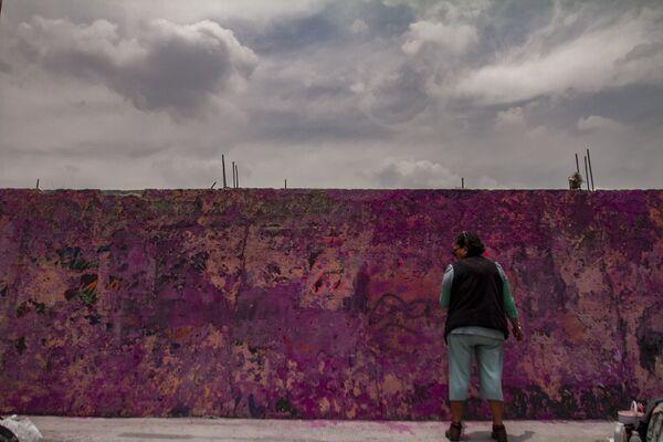 María del Carmen Volante, madre de Pamela Gallardo, desaparecida el 5 de noviembre de 2017; durante la elaboración del mural de su hija, en la estación de Metrobús La Joya, en la alcaldía Tlalpan.  - Sputnik Mundo