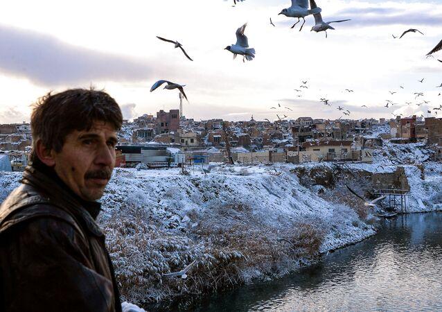 Unas gaviotas sobrevuelan el Tigris en Mosul en febrero de 2020