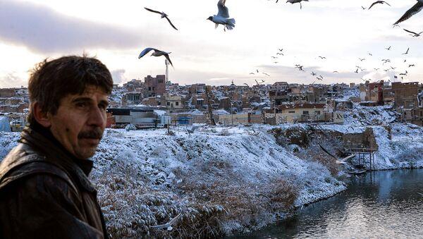 Unas gaviotas sobrevuelan el Tigris en Mosul en febrero de 2020 - Sputnik Mundo