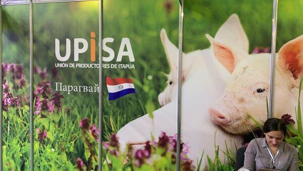 Upisa busca diversificar sus exportaciones en Rusia - Sputnik Mundo