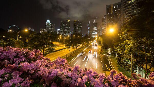 El panorama nocturno de Singapur - Sputnik Mundo