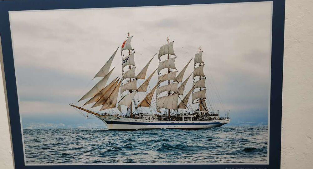 Una de las fotografías que integran la muesta 'Aristócratas del mar' en el Museo Marítimo y del Presidio de Ushuaia, Argentina