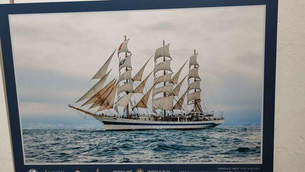 Una de las fotografías que integran la muesta 'Aristócratas del mar' en el Museo Marítimo y del Presidio de Ushuaia, Argentina - Sputnik Mundo