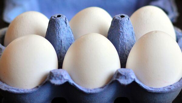 Huevos de gallina en cartón - Sputnik Mundo