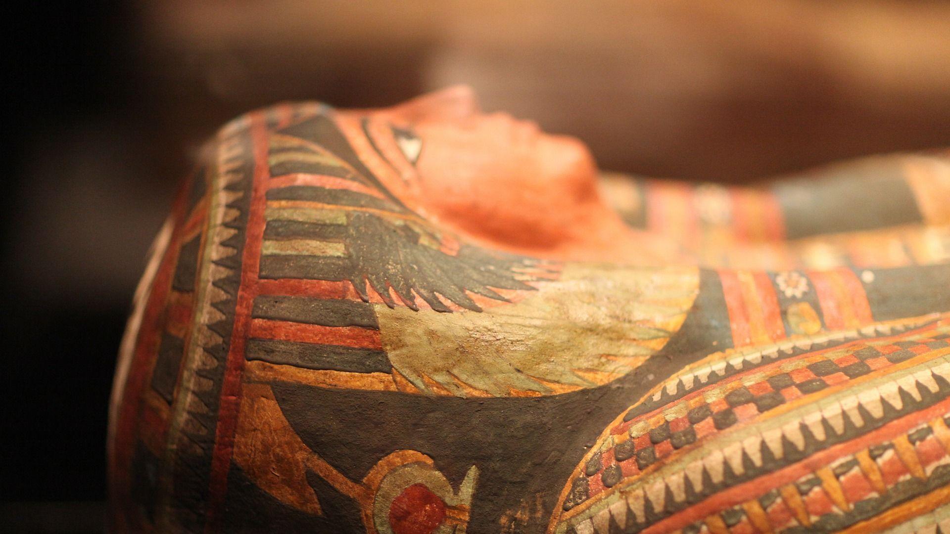 Un sarcófago de una momia egipcia - Sputnik Mundo, 1920, 30.03.2021