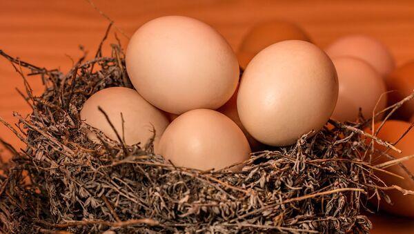 Huevos (imagen referencial) - Sputnik Mundo