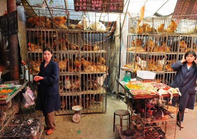 Un mercado de animales en Xining, China