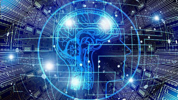 cerebro humano (imagen referencial) - Sputnik Mundo