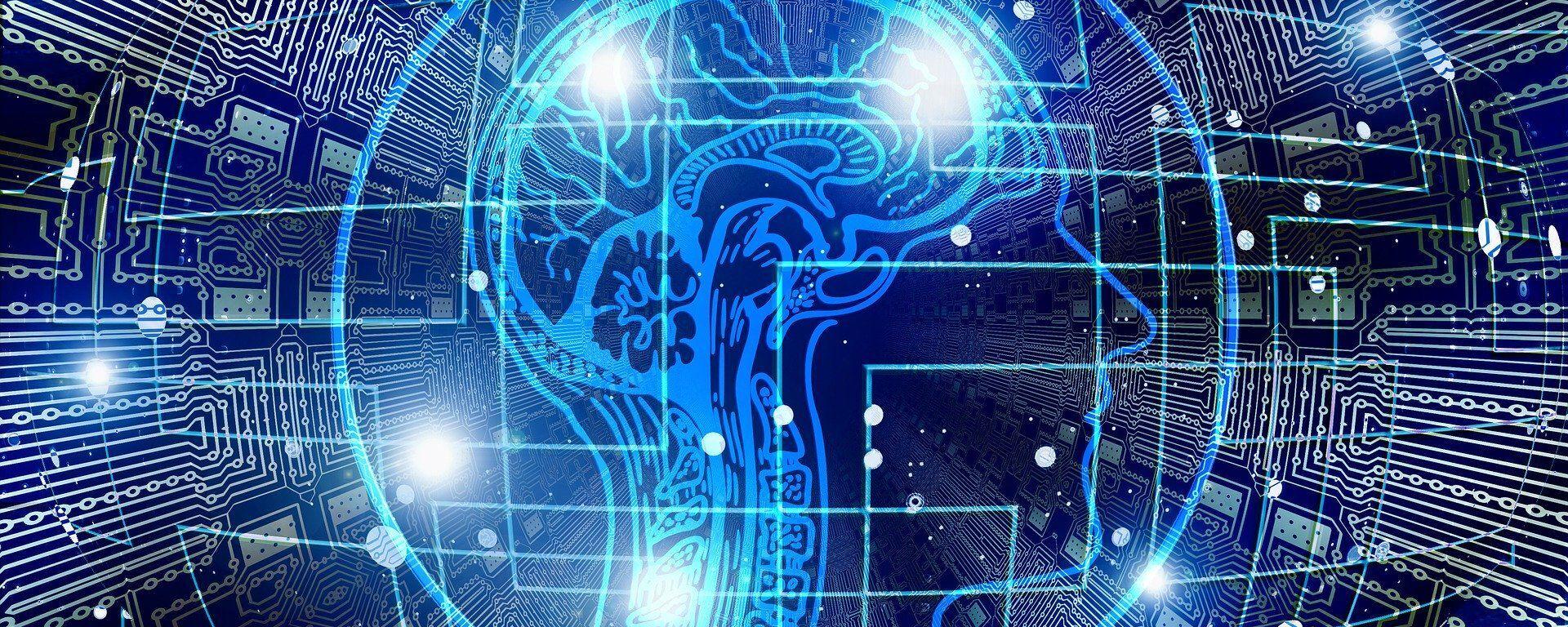 cerebro humano (imagen referencial) - Sputnik Mundo, 1920, 20.01.2021
