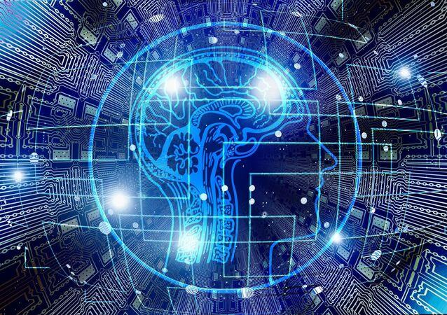 cerebro humano (imagen referencial)