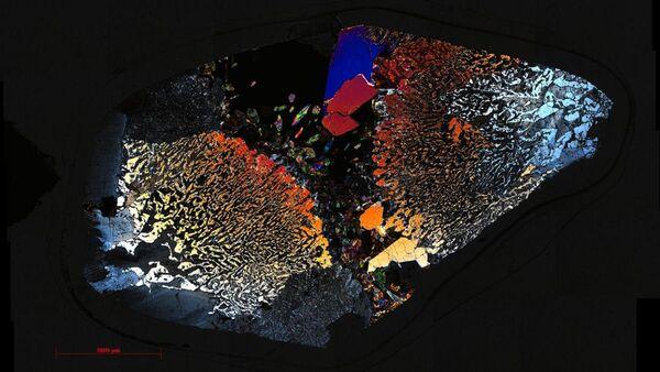 Microorganismos en la profundidad de la corteza marina - Sputnik Mundo