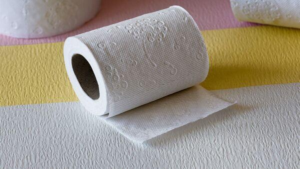 papel higiénico - Sputnik Mundo