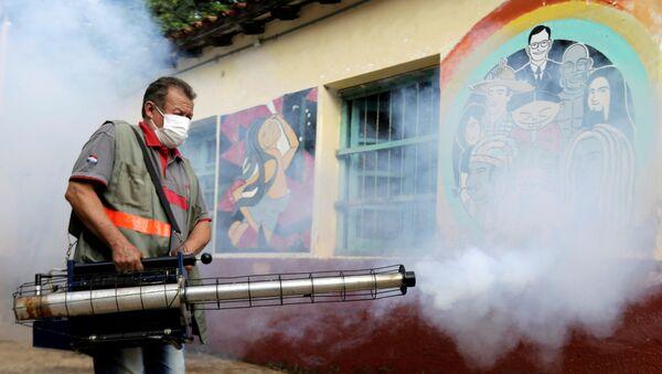 Lucha contra el brote de dengue en Paraguay - Sputnik Mundo