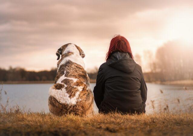 Amistad perro y humano
