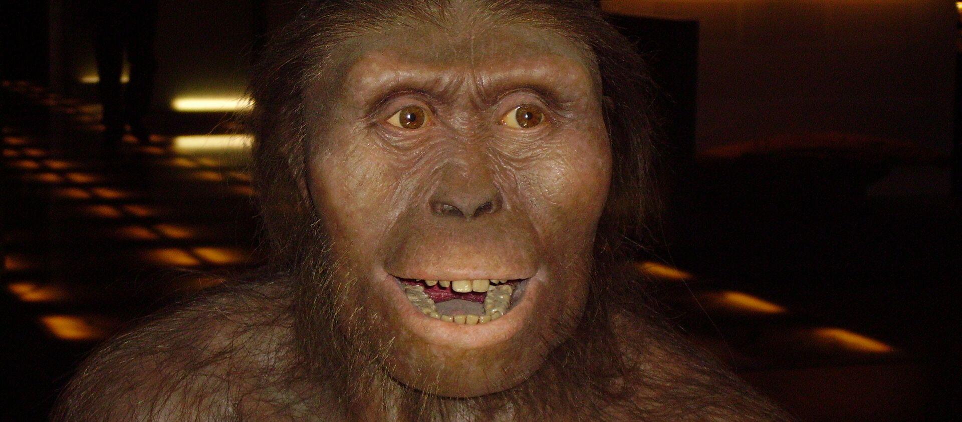 Un hombre prehistórico, imagen referencial - Sputnik Mundo, 1920, 01.04.2020
