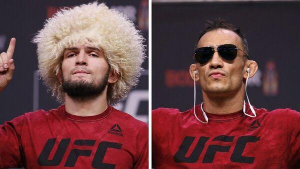 Khabib Nurmagomédov y Tony Ferguson, luchadores de artes marciales mixtas - Sputnik Mundo