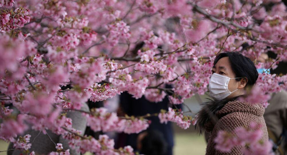 Una visitante con una máscara protectora goza de los cerezos en flor en el Jardín Nacional de Shinjuku Gyoen en Tokio.