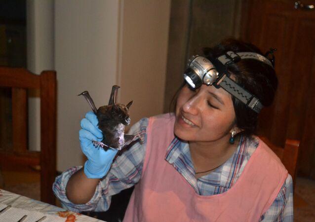 Raquel Galeón, la investigadora boliviana, experta en murciélagos