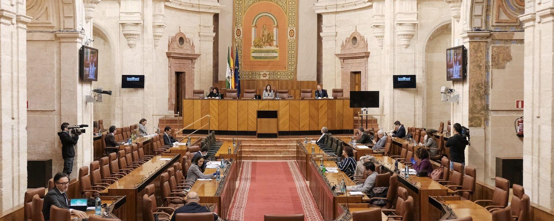 La Diputación Permanente del Parlamento de Andalucía - Sputnik Mundo, 1920, 04.04.2020