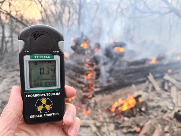 Un incendio en Chernóbil provoca un salto en los niveles de radiación - Sputnik Mundo