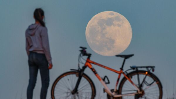 Así fue la 'superluna rosa' en distintos rincones del mundo   - Sputnik Mundo