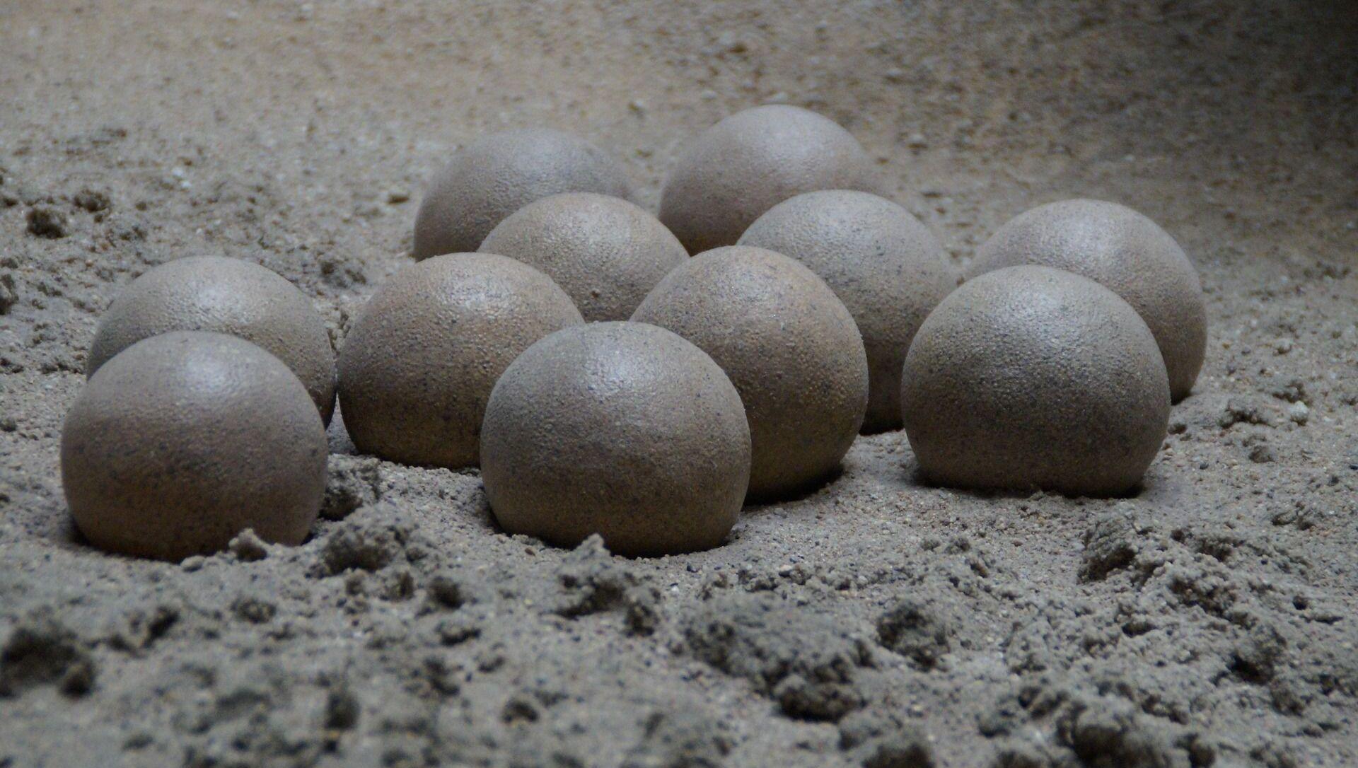 Huevos de dinosaurio (imagen referencial) - Sputnik Mundo, 1920, 12.04.2020