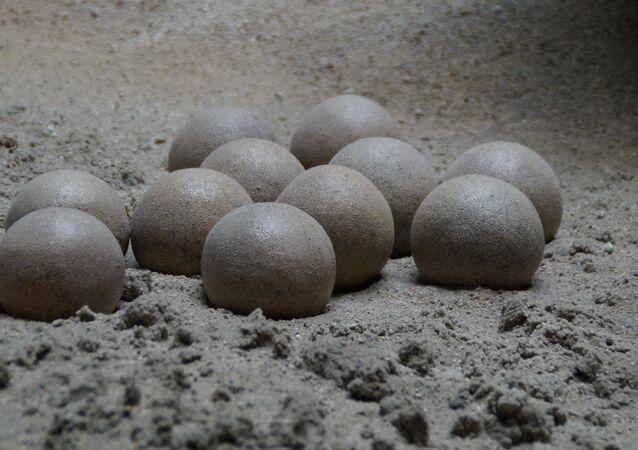 Huevos de dinosaurio (imagen referencial)