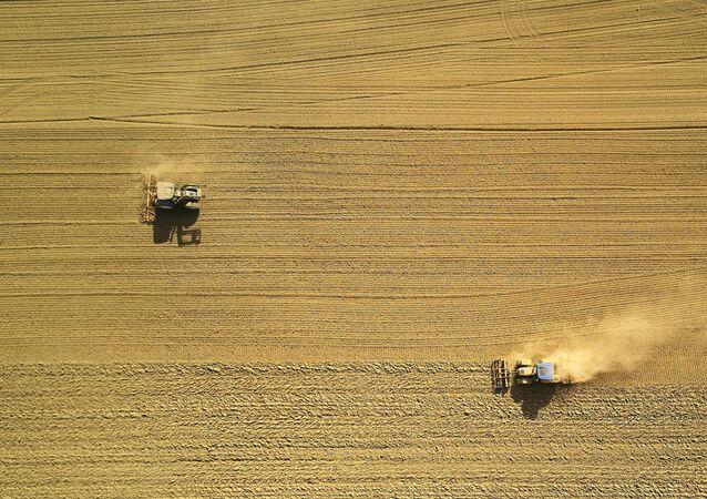 Un campo (imagen referencial)