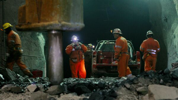 Trabajadores en faena de extracción - Sputnik Mundo