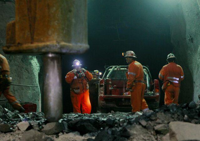 Trabajadores en faena de extracción