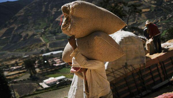 Campesinos venezolanos (archivo) - Sputnik Mundo