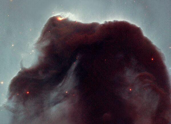 Nebulosa Cabeza de Caballo (2001) - Sputnik Mundo