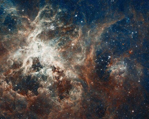 Fábrica estelar 30 Doradus (2012) - Sputnik Mundo