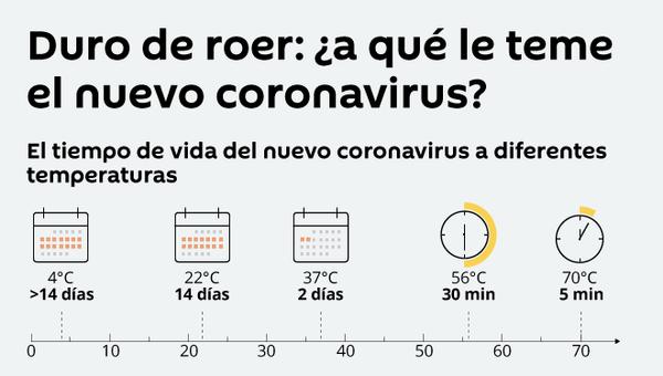 Duro de roer: ¿a qué le teme el nuevo coronavirus? - Sputnik Mundo