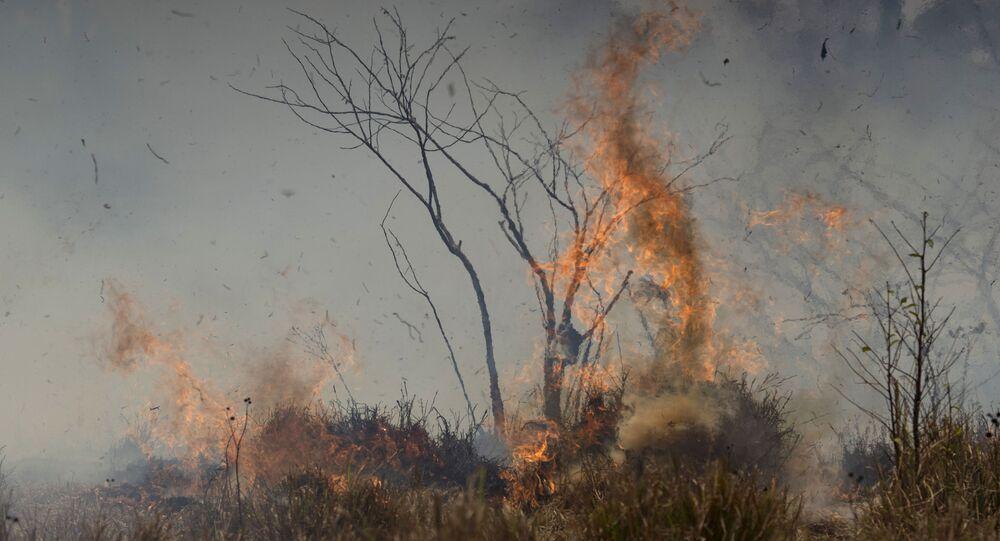 Incendio forestal en la Amazonía brasileña