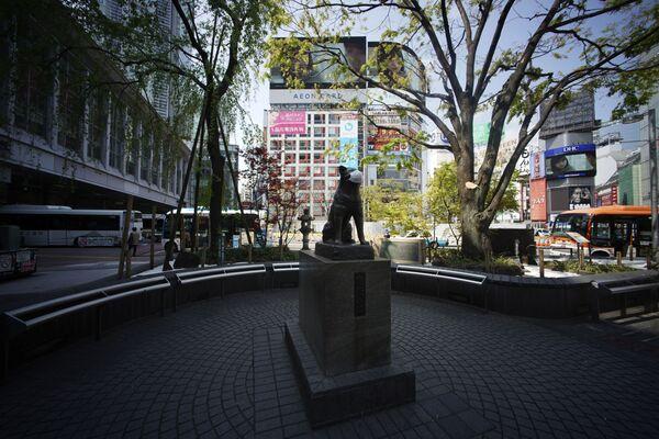 La estatua de Hachiko, un perro japonés Akita, tiene puesto un tapaboca. Está cerca de la estación de Shibuya, en Tokio - Sputnik Mundo