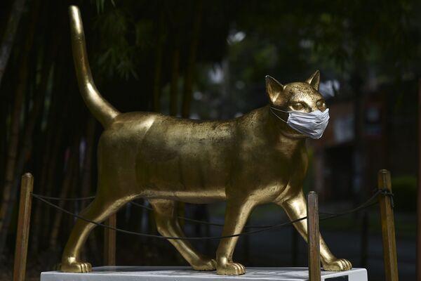 La estatua La gata Calida, de Cali, Colombia, lleva una mascarilla - Sputnik Mundo