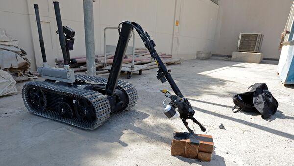 Robot EOD (Imagen referencial) - Sputnik Mundo