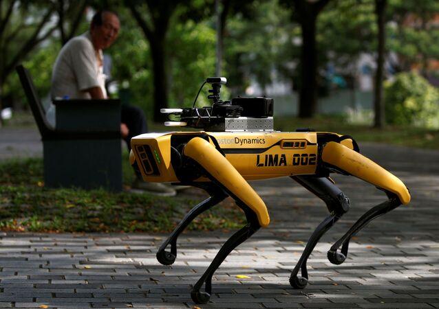 El perro robótico Spot patrulla un parque de Singapur