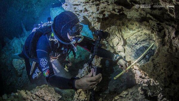 Hallazgos en el cenote Aktun Ha, México - Sputnik Mundo