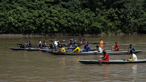Los indígenas de la etnia Siekopai en la Amazonía ecuatoriana - Sputnik Mundo