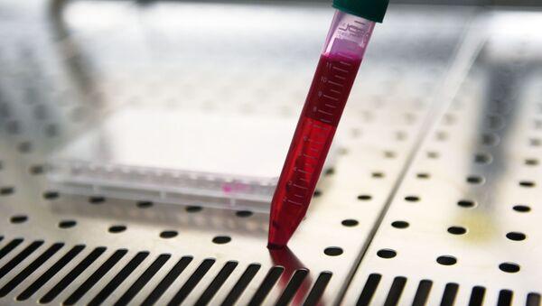 Elaboración de una vacuna contra COVID-19 - Sputnik Mundo