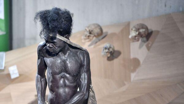 Homo sapiens, imagen ilustrativa - Sputnik Mundo