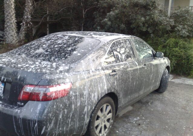 Un auto recubierto por heces de aves