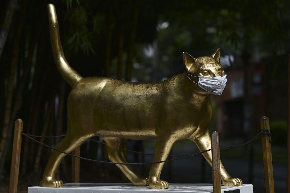 La escultura la 'gata CaliDA' de José Horacio Martínez, en Cali, Colombia.